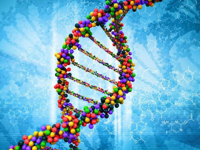 Genetic testing; genetic disorders; prenatal testing; Diagnostic genetic; newborn screening; forensic testing; Genetic Counseling